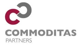 Commoditas Partners  | Celent