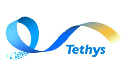 Tethys Technology Inc. shortlisted for Best Options Trading Platform Vendor and Best Equity  Trading Platform Vendor at the Wall Street Letter Institutional Trading Awards  | Tethys Technology | Celent