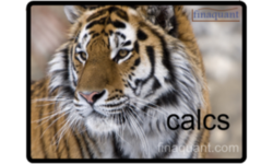 finaquant® calcs – Calculation Engine based on Table Functions | Finaquant Analytics GmbH | Celent